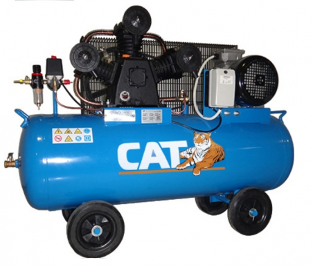 Поршневой масляный компрессор CAT W65-200
